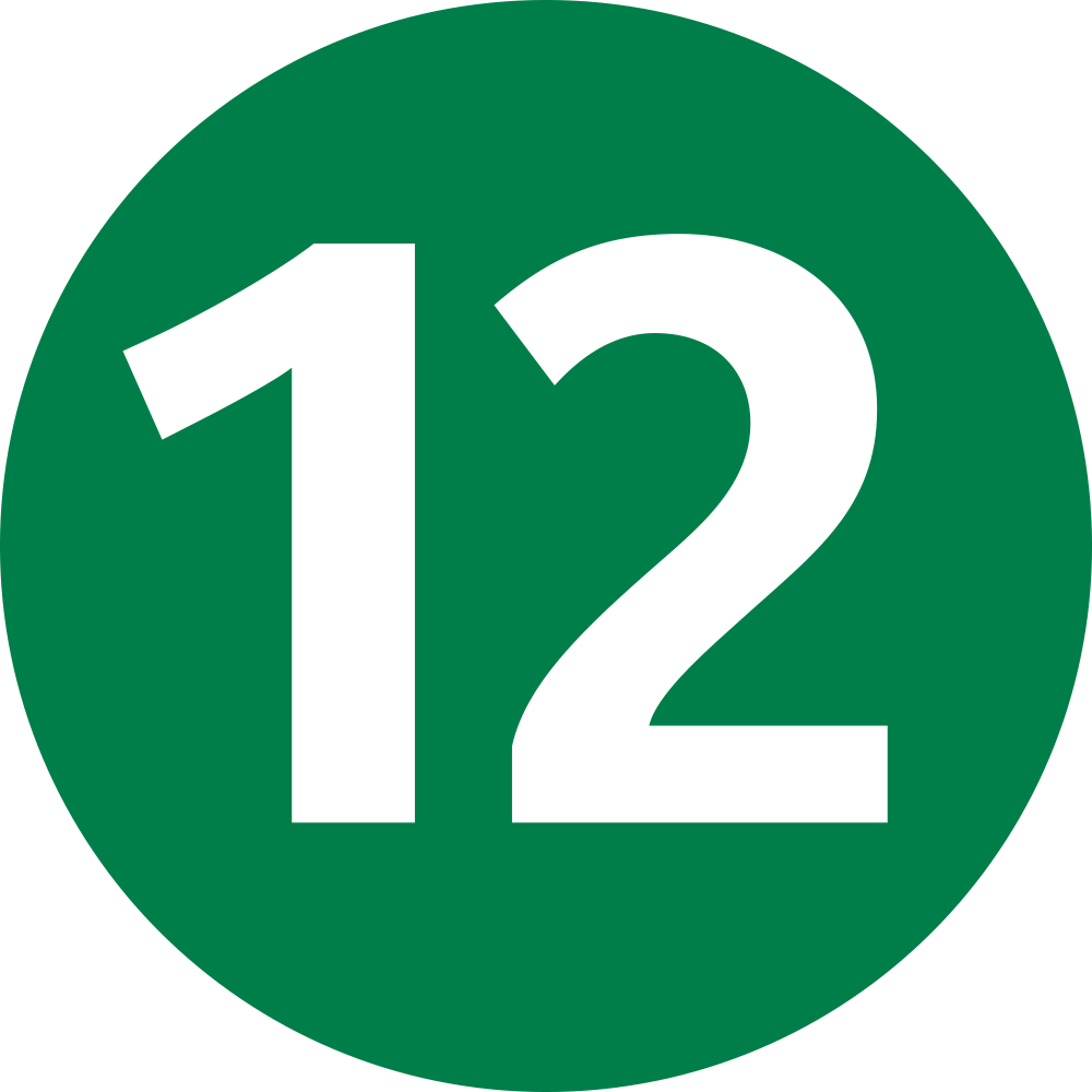 ligne 12 icon