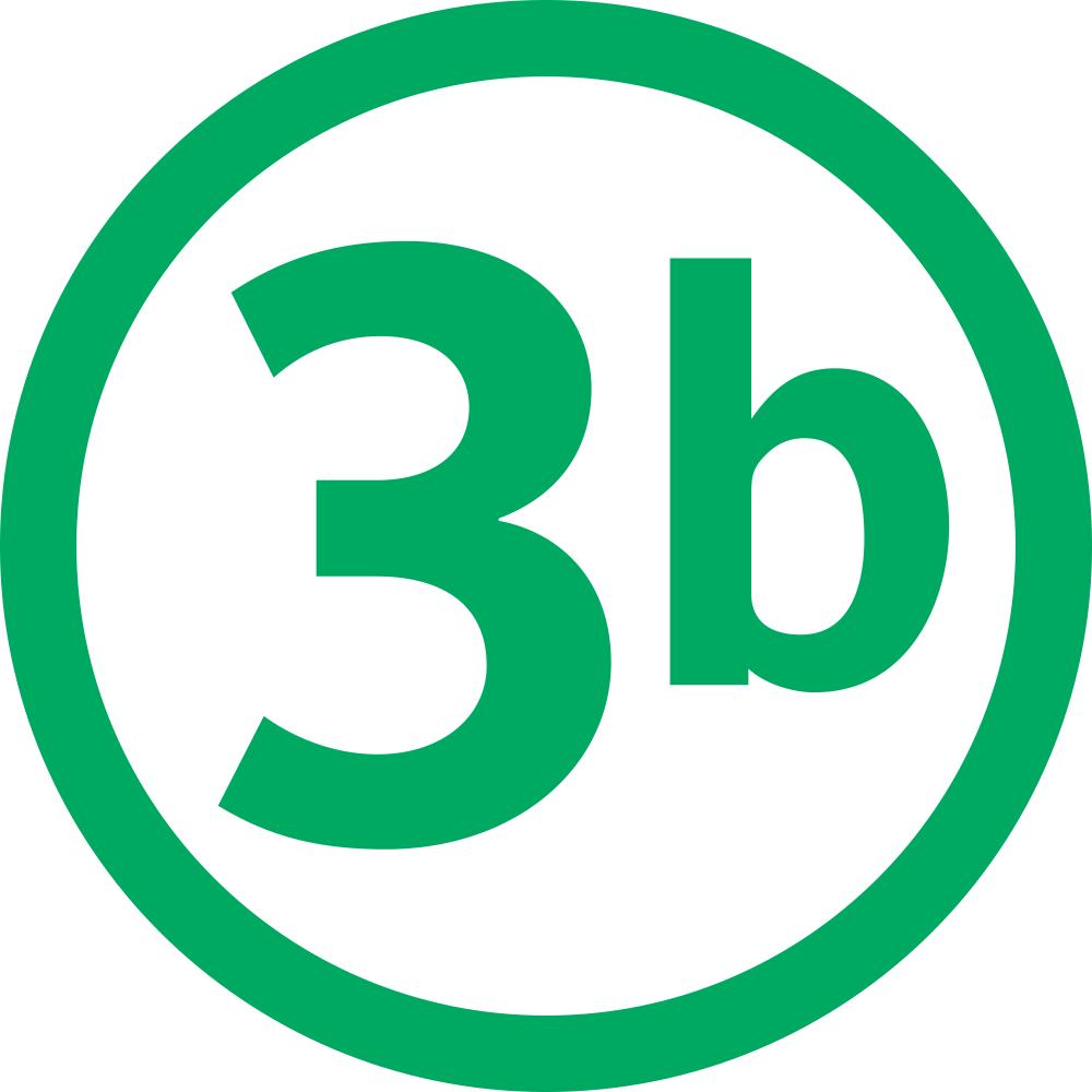 T3b icon