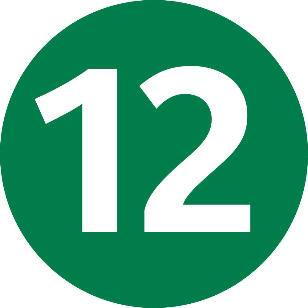 ligne-12-icon