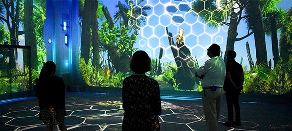 Nausicaa immersive room